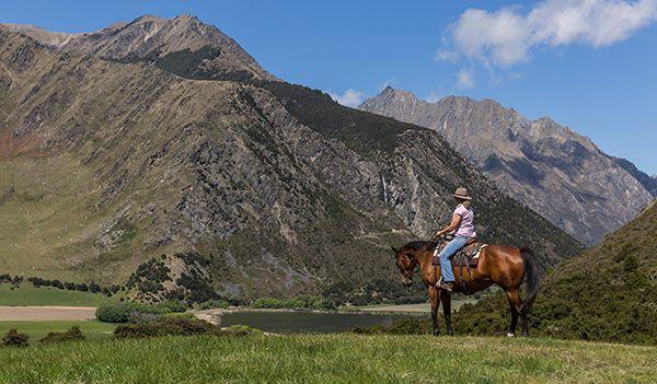 Wanaka Accommodation Discover Dingleburn Activities Self Horse Trekking - Activities