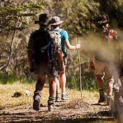 Wanaka Accommodation Discover Dingleburn Activities Walking tramping 250x250 - Gallery