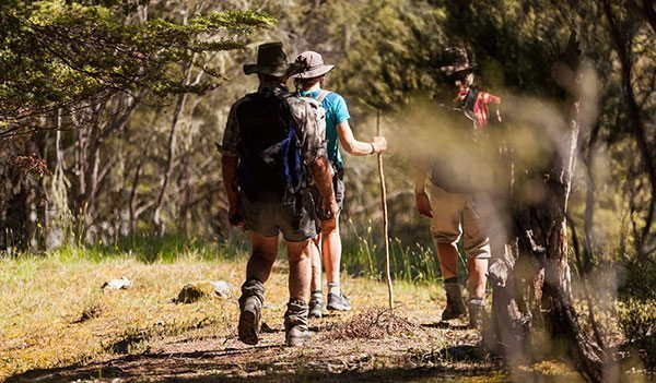 Wanaka Accommodation Discover Dingleburn Activities Walking tramping - Activities