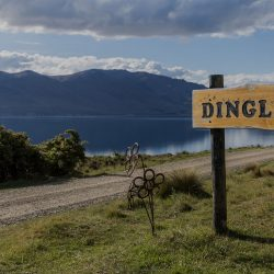 Visit Discover Dingleburn Station for a Kiwk Holiday in Wanaka NZ High Country Station 250x250 - Gallery