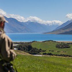 Wanaka Hunting NZ Discover Dingleburn High Country Station Wanaka NZ 250x250 - Gallery